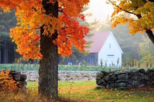 New Hampshire Family Vacation: Follasnbee Inn, Kezar Lake, North Sutton, NH B&B